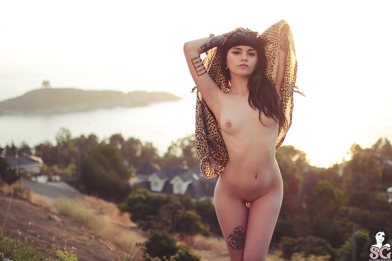 Só as Selecionadas #266 fotos de ensaios sensuais com mulheres peladas e muito safad